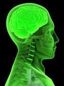 green brain