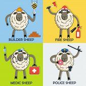 Sheep professional character vector set