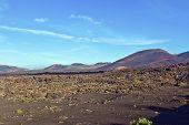Volcanic Area In Timanfaya National Park