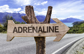 picture of opiate  - Adrenaline wooden sign with a street background  - JPG