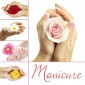 foto of french manicure  - Hands with french manicure and flower isolated on white in collage - JPG