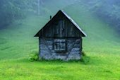 picture of house woods  - alone cabin in the woods - JPG