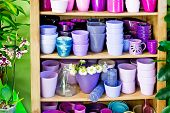 stock photo of planters  - many new violet planters in the shelf - JPG