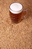 pic of malt  - Mug of light beer standing on malted barley grains - JPG