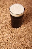stock photo of malt  - Nonic pint glass of dark stout beer over malted barley grains - JPG