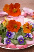 picture of nasturtium  - salad of edible flowers in ceramic dish - JPG