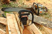 foto of chainsaw  - Gas power Chainsaw on the woods of a recently cut down the tree - JPG
