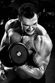 image of execution  - vertical close up portrait handsome guy bodybuilder execute exercise with dumbbells in dark gym balck and white photo - JPG