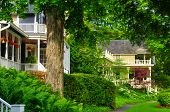 stock photo of tree lined street  - Quaint old homes line a tree - JPG