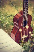image of ukulele  - Ukulele processed in vintage style - JPG
