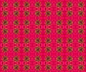 pic of zinnias  - Zinnias flower seamless pattern background - JPG