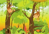 picture of cartoon animal  - Illustration of  a cartoon monkey on white  - JPG