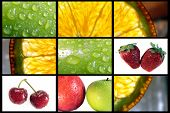 Fruit Composition 6