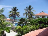 Tiled Roof Tops At Ambergris Caye