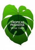 Tropical Paradise Leaf Vector Cover Layout. Cool Floral A4 Design. Exotic Tropic Plant Leaf Vector.  poster