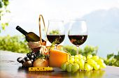 picture of wine grapes  - Red wine - JPG