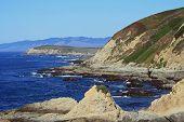 Bodega Head Bodega Bay