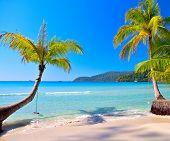 Sunny tropical beach under blue sky. Luxury summer vacations scene.