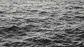 Water Surface Black And White Abstract Image. River Or Sea Water Pattern With Small Waves, Natural C poster