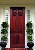 foto of front door  - the front door - JPG