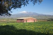 green grass and abandoned red barn under the volcano Etna, Italy