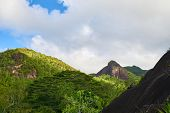 Anse Major Trail, Hiking On Nature Trail Of Mahe, Seychelles poster