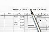 Project Look Ahead Schedule