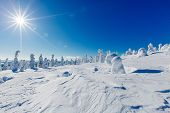 Beautiful Winter Landscape With Snowy Trees In Lapland, Finland. Frozen Forest In Winter. poster