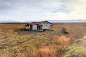 Abandoned Building At Drawbridge, The Last Remaining Ghost Town In San Francisco Bay Area. Don Edwar poster