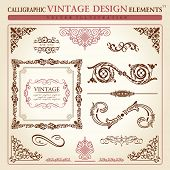 calligraphic elements vintage ornament set. Vector frame decor