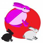 Vector Illustration Of Cartoon Rabbits. Set Of Drawing Flat Rabbit. Collection Of Six Cute Mammal An poster