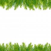 Christmas Tree Borders, Isolated On White Background, Vector Illustration