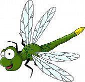 funny green dragonfly cartoon