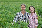 Couple of winemakers standing in vineyard