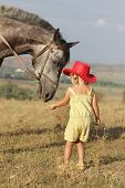young girl feeding horse on natural background