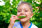 Boy eating a green Peas