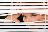 stock photo of stripping women window  - Woman peering through blinds - JPG