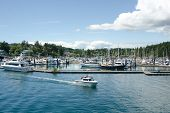 The marina at Friday Harbor on San Juan Island
