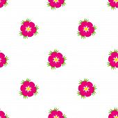 Eglantine Wildrose Seamless Pattern