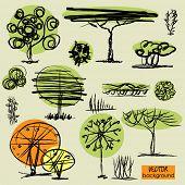 art sketching set 3 of vector trees symbols
