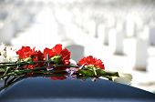 image of arlington cemetery  - Arlington National Cemetery with flowers on casket and gravestones in background - JPG