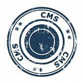CMS negócios conceito selo isolado em um fundo branco.