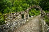 Ruines of old bridge near Foix, France
