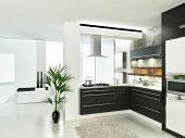 Modern luxury white and black kitchen interior