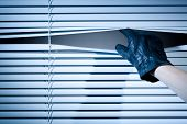 Thief Opening Window Blinds