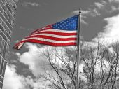 3-D American Flag black & white color