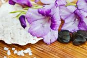 image of gladiola  - Spa theme with lavender colored gladiola flowers - JPG