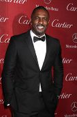 PALM SPRINGS - JAN 4:  Idris Elba at the Palm Springs Film Festival Gala at Palm Springs Convention