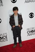 LOS ANGELES - JAN 8:  Blake Garrett Rosenthal at the People's Choice Awards 2014 Arrivals at Nokia T