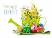easter egg with spring flower isolated on white background